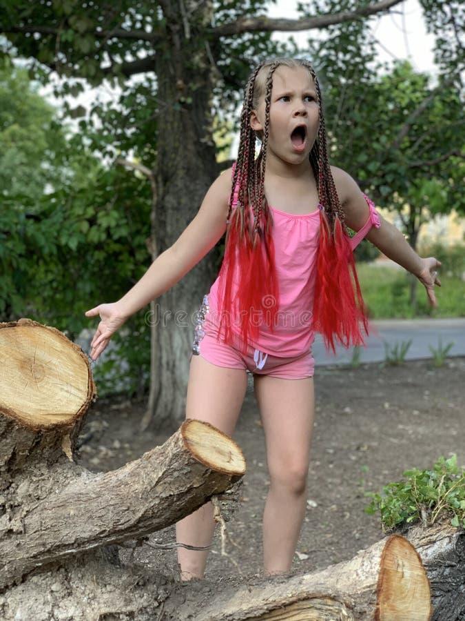 h?rlig flicka little En flicka med afrikanska flätade trådar royaltyfria bilder