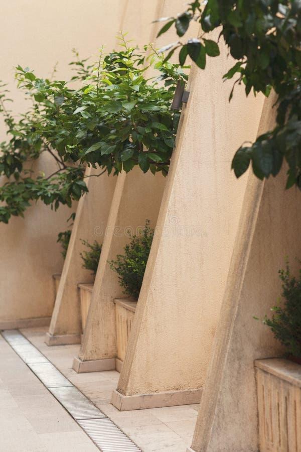 H?rlig gata i Chania, Kreta?, Grekland royaltyfria bilder