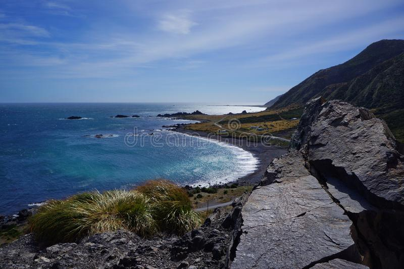 h?rlig kustlinje New Zealand royaltyfria foton