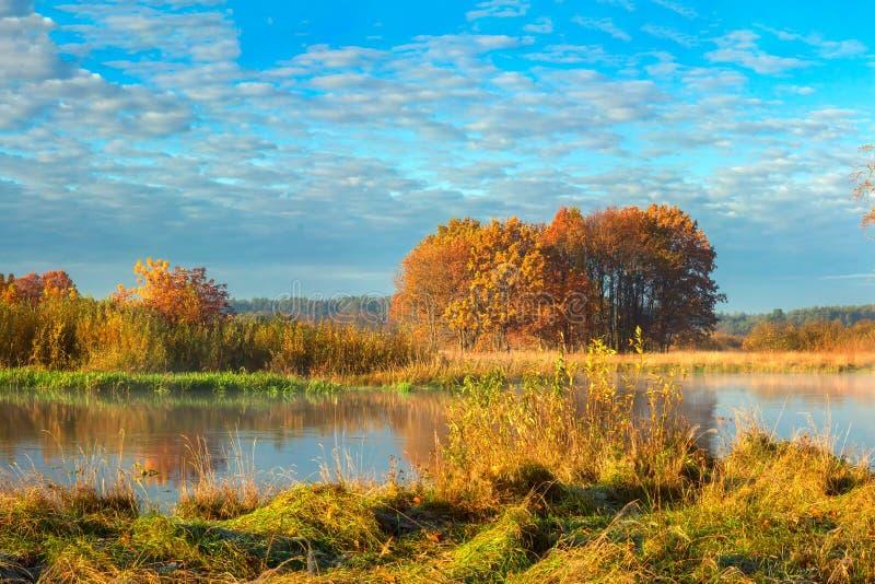 h?rlig liggande f?r h?st Guld- natur för landskap på floden Fantastisk nedg?ng royaltyfri fotografi