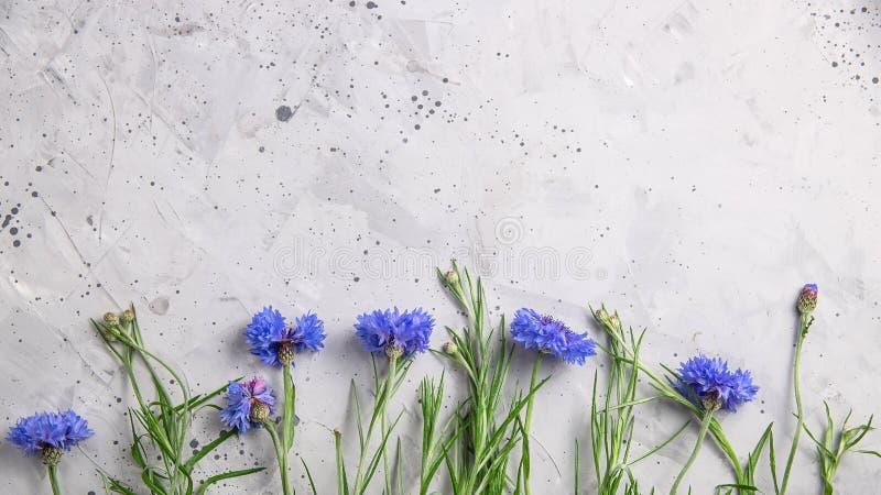 H?rlig minimalistic gr? bakgrund med bl?a blommor royaltyfri foto