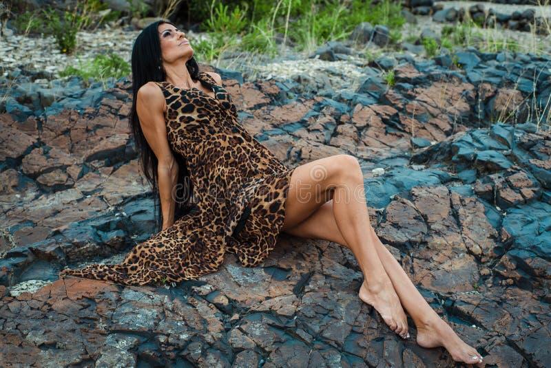 H?rlig sexig kvinna som poserar i leopardtryckkl?nning p? m?rk bakgrund royaltyfri fotografi
