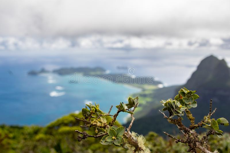 H?rlig sikt fr?n toppm?tet av monteringen Gower 875 meter ovanf?r havsniv?n, h?gst punkt p? Lord Howe Island royaltyfri fotografi