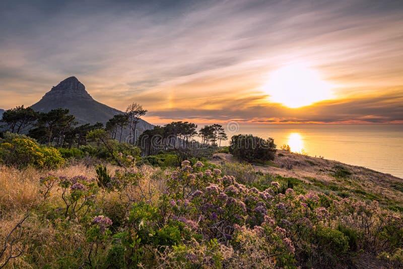 H?rlig solnedg?ng ?ver den hav- och lejons huvudbergsikten fr?n signalkullen i Cape Town fotografering för bildbyråer