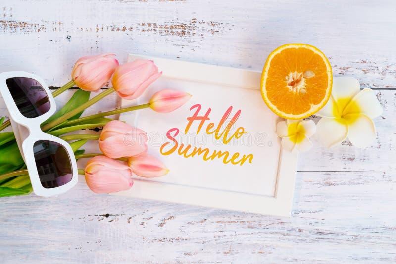 H?rlig sommarferie, strandtillbeh?r-, apelsin-, solglas?gon-, blomma- och fotoram p? tr?bakgrunder fotografering för bildbyråer