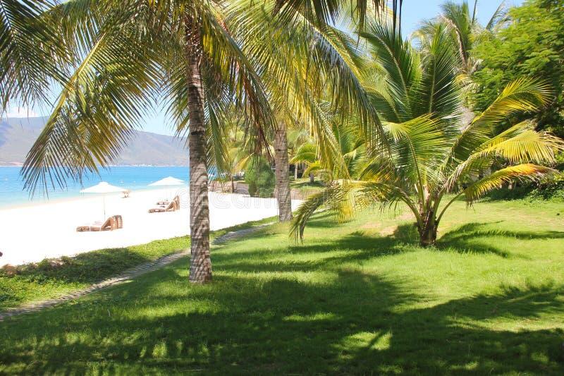 h?rlig strand Stolar p? den sandiga stranden n?ra havet Sommarferie och semesterbegrepp f?r turism Inspirerande tropiskt l royaltyfri bild