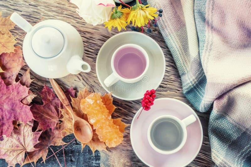 H?rlig h?stsammans?ttning med te höstsidor och koppar med druvasocker på en lantlig trädbakgrund Begreppet av royaltyfri foto