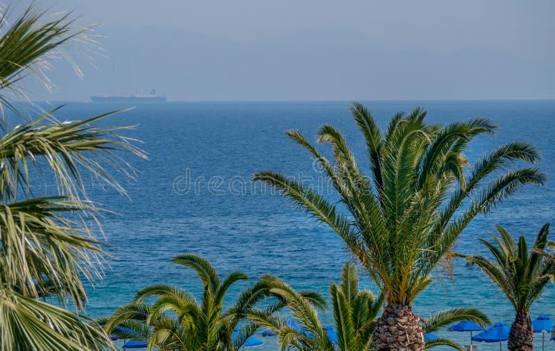 H?rlig tropisk kustlinje med palmtr?d och klart bl?tt vatten arkivfoto