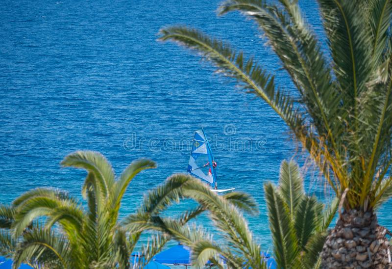 H?rlig tropisk kustlinje med palmtr?d och klart bl?tt vatten arkivbilder