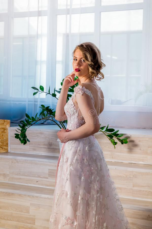H?rlig ung flicka i en frodig elegant kl?nning i studion royaltyfri foto
