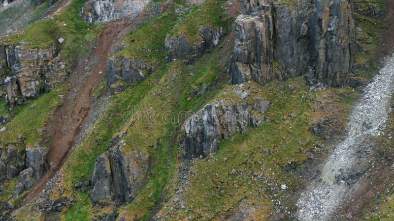 H?rliga berg av Kamchatka, f?glar av Kamchatka arkivfoto