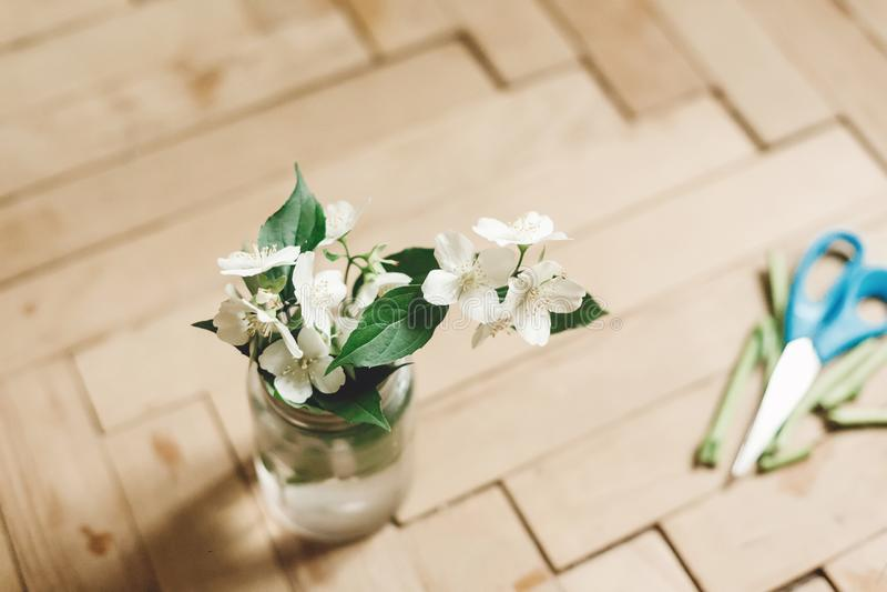 H?rliga jasminblommor p? filial i exponeringsglaskrus p? det lantliga gamla tr?golvet, kopieringsutrymme Blom- dekor och ordning  fotografering för bildbyråer