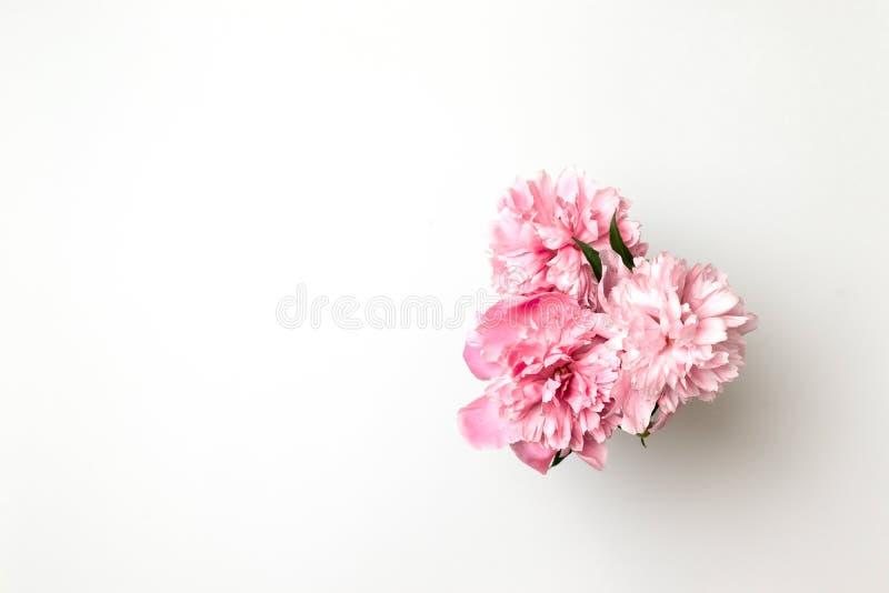 H?rliga rosa pionblommor p? den vita tabellen med kopieringsutrymme f?r din sikt och l?genhet f?r text b?sta l?gger stil arkivfoton
