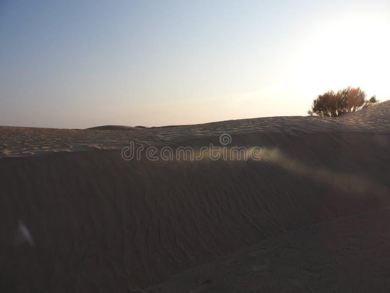 H?rliga soluppg?ng- och sanddyn i den Sahara ?knen, Afrika fotografering för bildbyråer