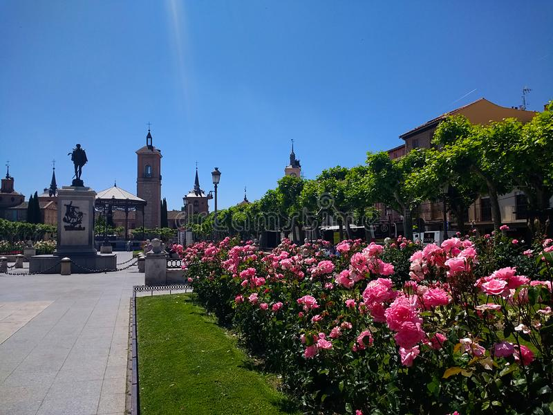 H?rliga tr?dg?rdar och monument i bakgrunden i stadsmitten av Alcala de Henares, Madrid, Spanien arkivbild