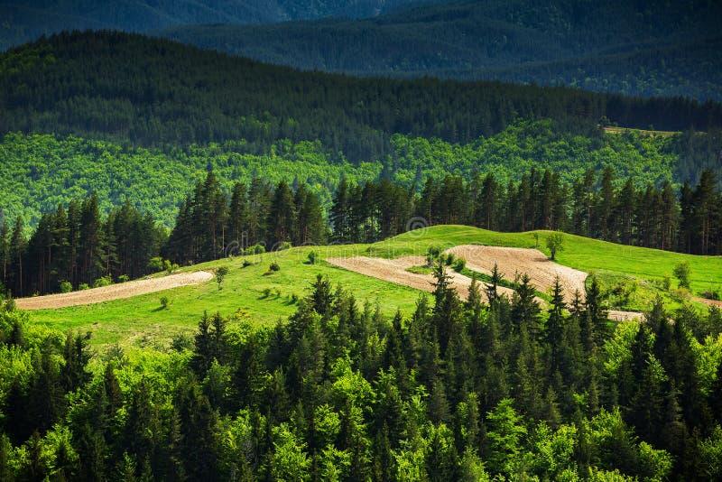 H?rligt berglandskap, med bergmaxima som t?ckas med skogen och en molnig himmel Bulgariskt berg, Europa royaltyfri fotografi