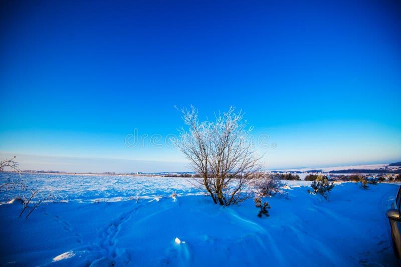 H?rligt landskap f?r vinter arkivfoton