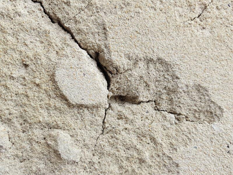 H?rligt lutningbakgrundsbaner f?r ovanlig och h?rlig textur f?r text - av murbruk eller betongv?ggen med sprickor royaltyfri foto