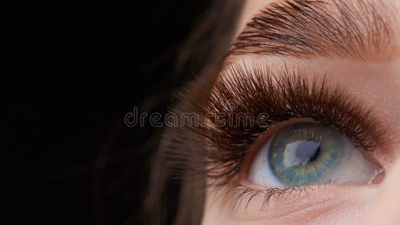 H?rligt makrofotografi av en kvinnas ?ga med extremt smink av l?nga ?gonfrans Perfekta l?nga ?gonfrans utan sk?nhetsmedel arkivbilder