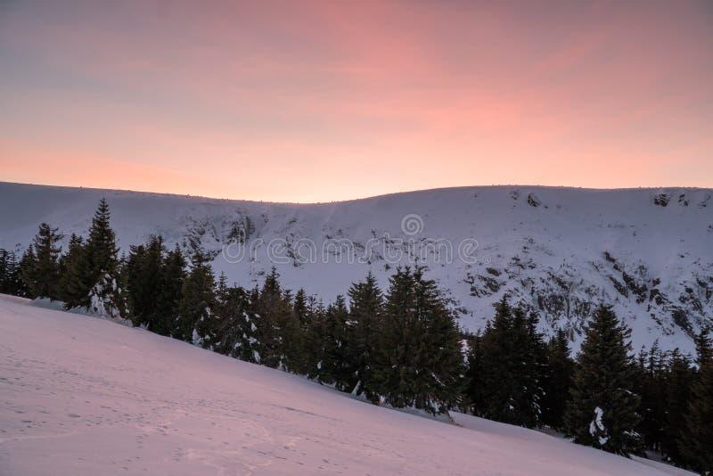 H?rligt vinterlandskap i berg p? solig ljus dag, med tr?d som t?ckas med enormt belopp av sn? med att f?rbluffa former arkivbild