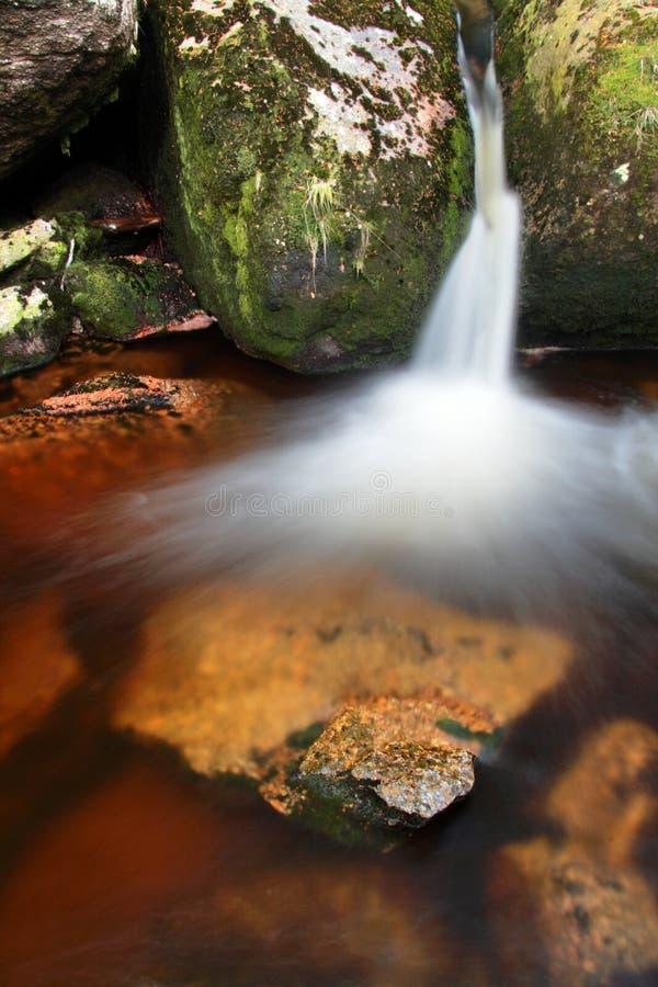 H?stlandskap, f?rgrika sidor p? tr?d, morgon p? floden liten vattenfall E royaltyfri bild