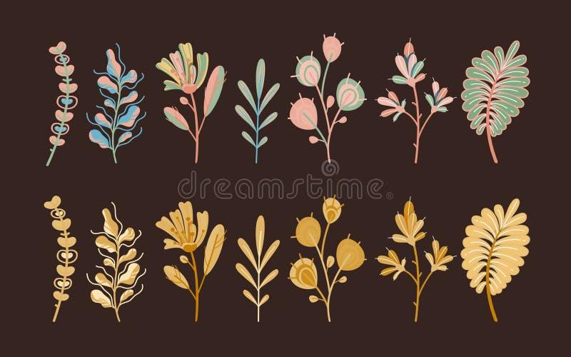 H?stv?xter Sidor och sädesslag för skog gulliga abstrakta i ekologiska plana blommor för trädgård som är botaniska på mörk bakgru royaltyfri illustrationer