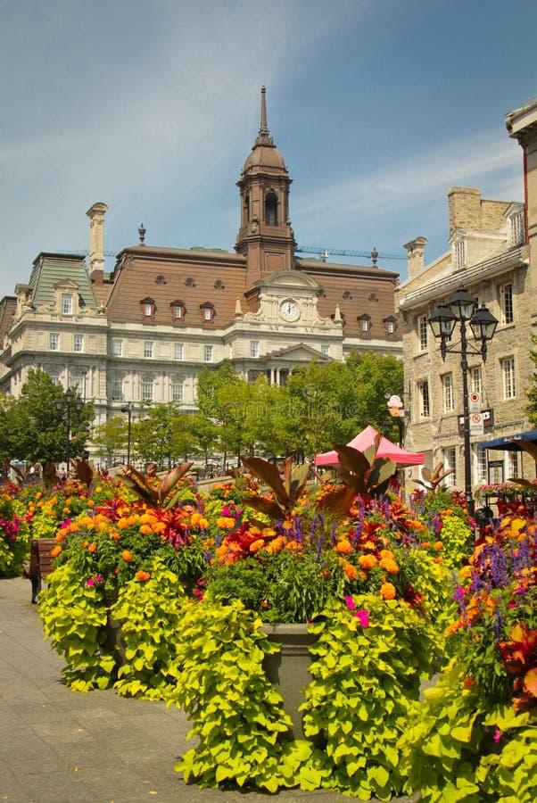 Hôtel de ville, Montréal photos stock