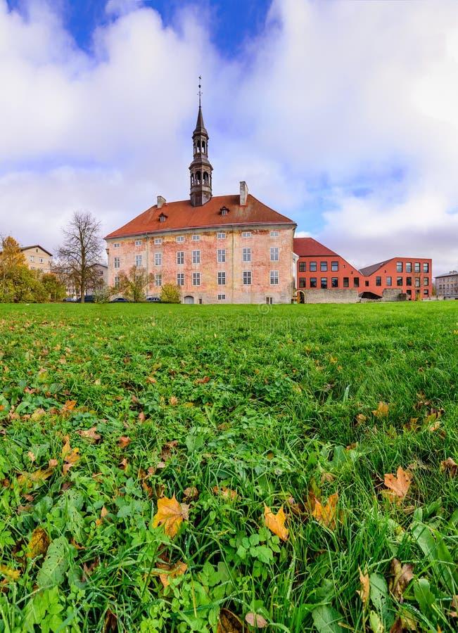 H?tel de ville de Narva photographie stock libre de droits