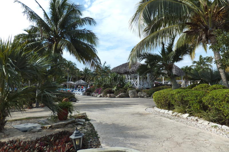 Download Hôtel Melia Cayo Santa Maria - Cuba Photo stock - Image du ressource, santa: 87708722
