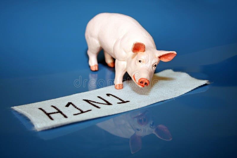 H1N1 oder Schweingrippe lizenzfreie stockfotografie