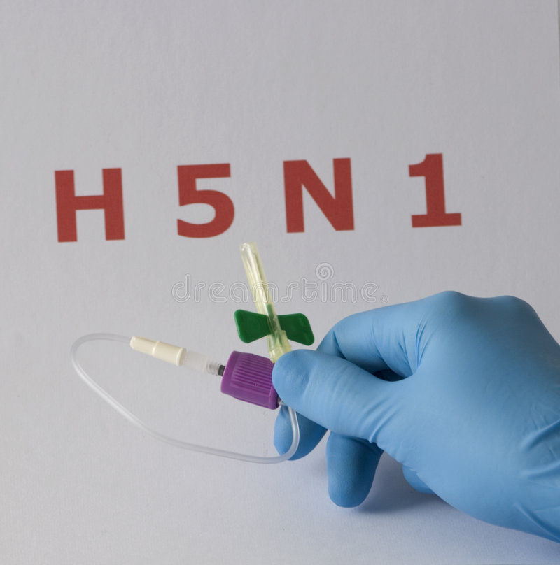 H5n1 photos stock