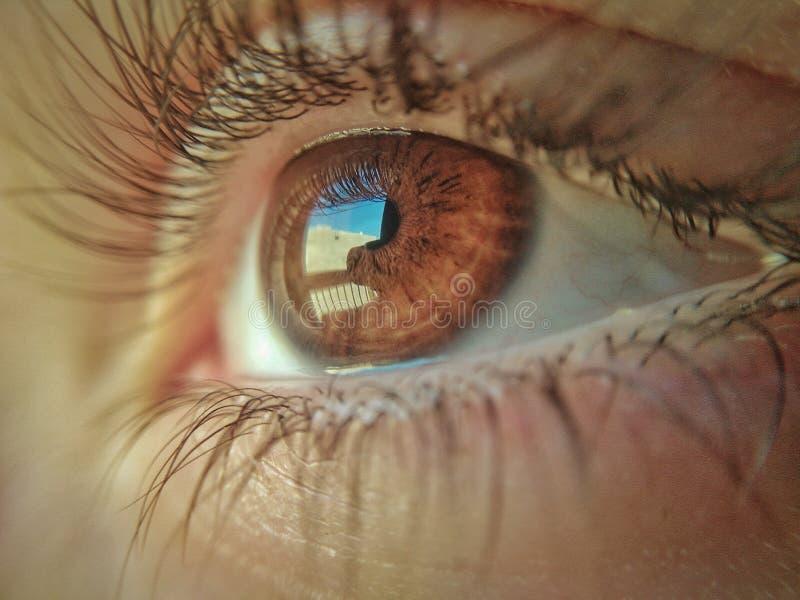 ha I-vision arkivbild