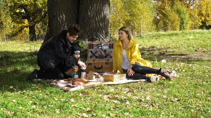 ha picknick för familjpark arkivbilder