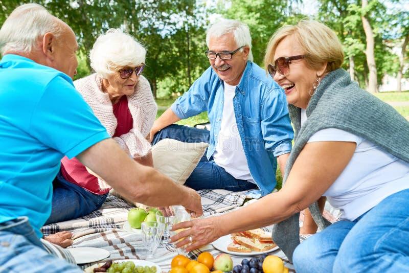 Ha picknicken med vänner royaltyfri bild