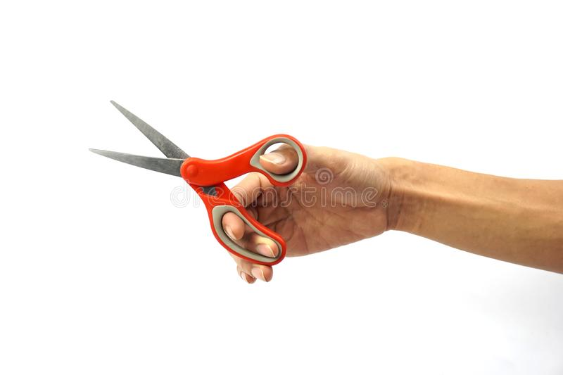 A ha potato della mano dell'uomo che tiene le forbici rosse del metallo contro la b bianca fotografia stock