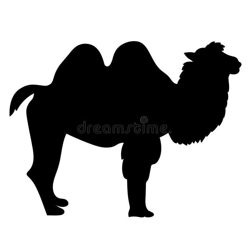 Ha sex med le tecknad film för kamel två också vektor för coreldrawillustration royaltyfri illustrationer