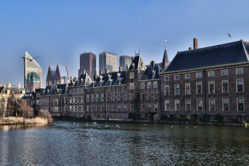 Haag ` s Binnenhof eller inre domstol med det Hofvijver eller domstoldammet royaltyfri bild