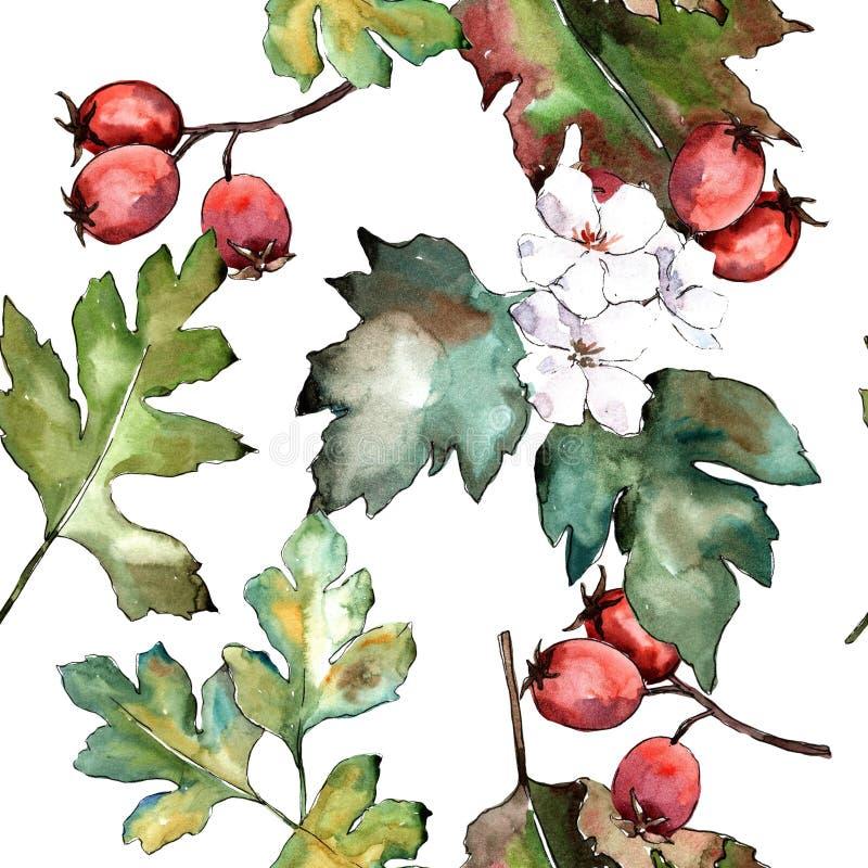 Haagdoorn groen blad Botanisch de tuin bloemengebladerte van de bladinstallatie Naadloos patroon als achtergrond stock illustratie