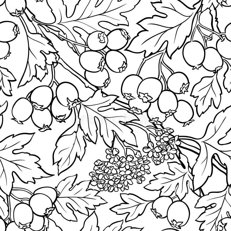 Haagdoorn naadloos patroon royalty-vrije illustratie