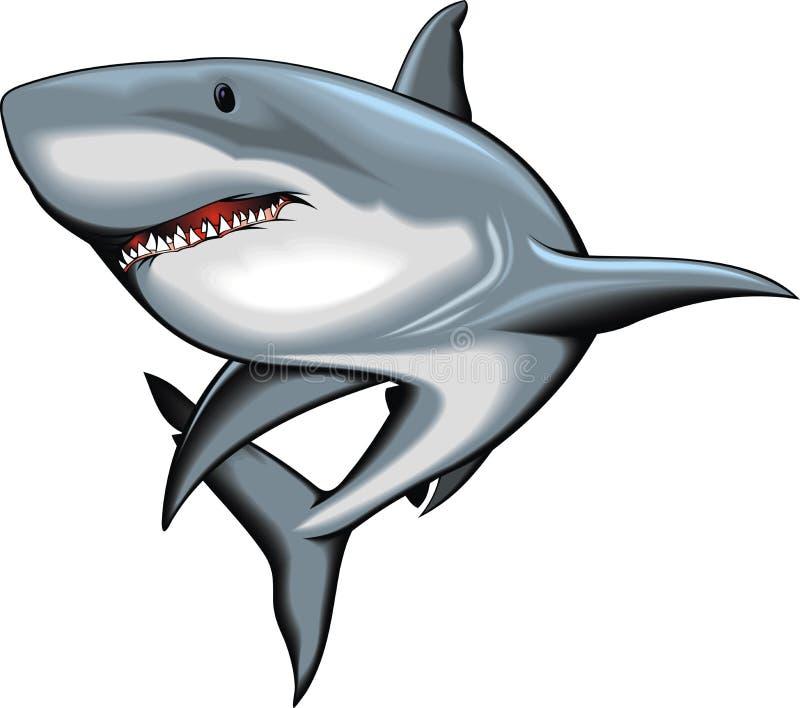 Haai op de witte achtergrond wordt geïsoleerd die vector illustratie