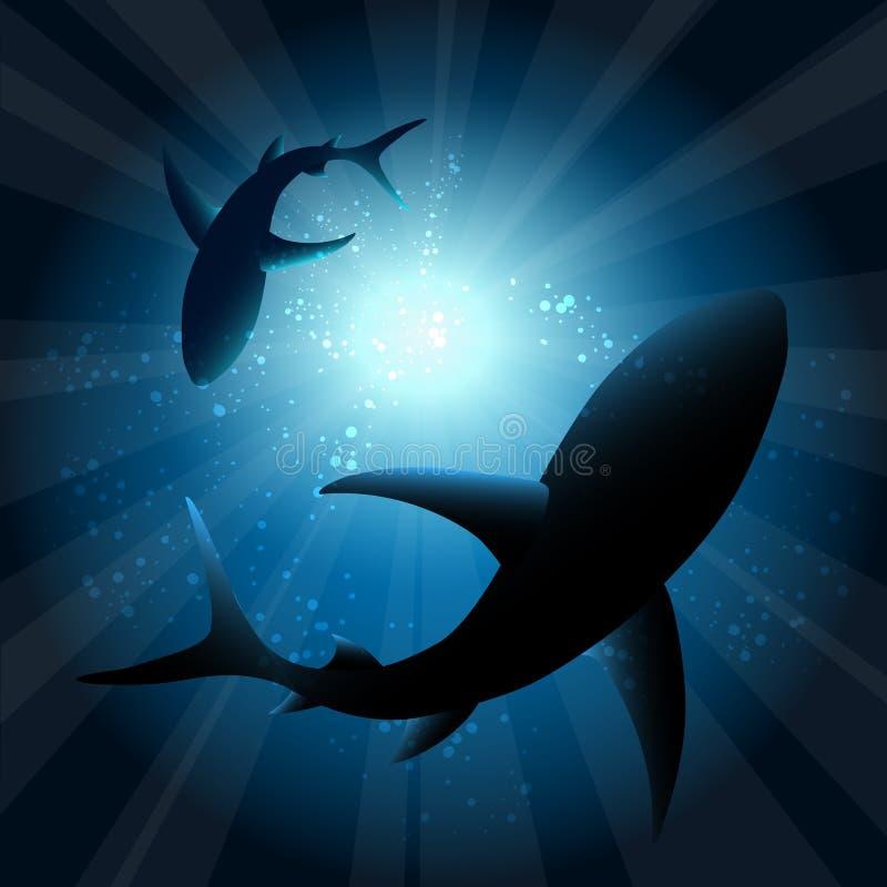 Haaien onder water vector illustratie
