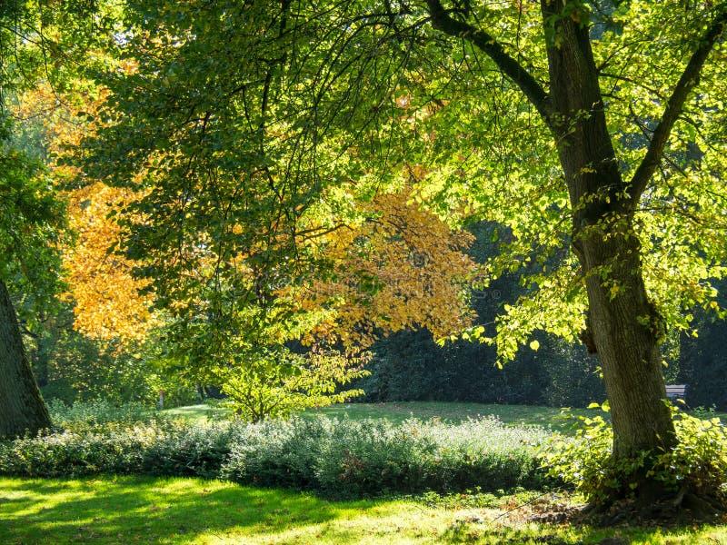 Haaksbergen nos Países Baixos imagens de stock royalty free