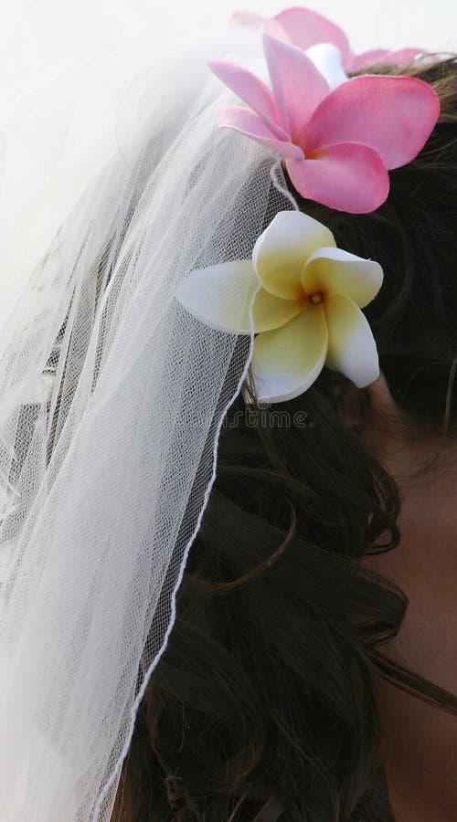 Haar der Braut, Schleier und Frangipani-Blumen lizenzfreies stockfoto