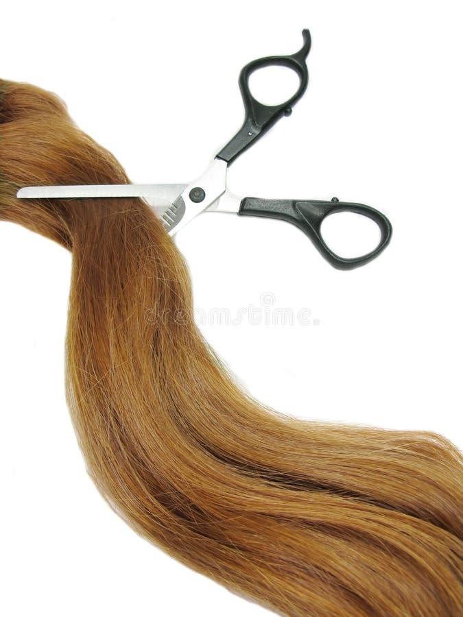 Haar und Scheren im gingery Haar stockfotos