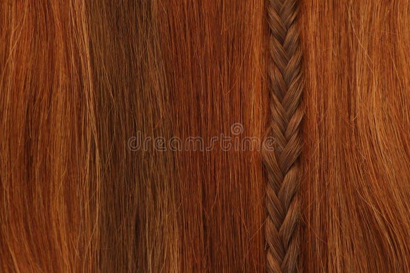 Haar-Zopf-Vertikale stockbilder