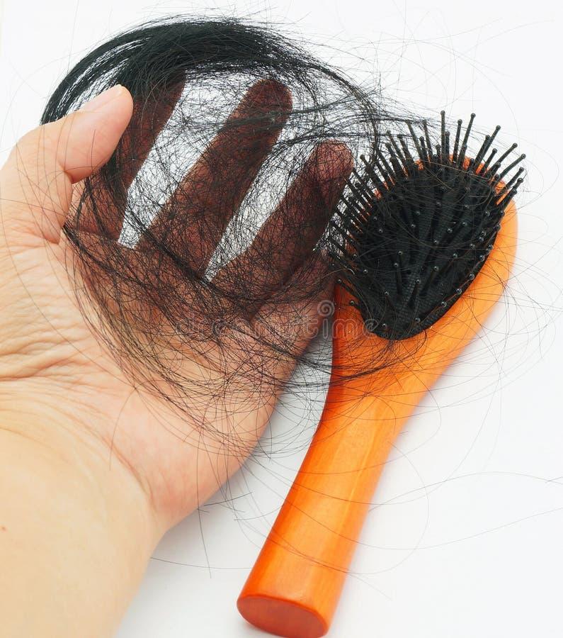 Haarausfall in den Frauen stockbild