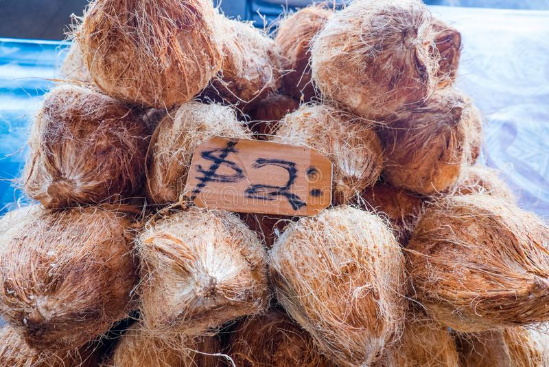 Haarige braune Kokosnüsse in den Hülsen für Verkauf an Frischware Fugalei lizenzfreie stockfotografie