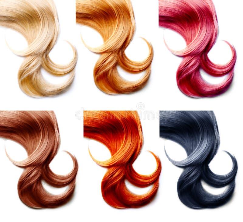 Haarkleuren Geplaatst die op wit worden geïsoleerd royalty-vrije stock afbeeldingen