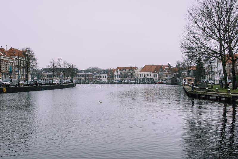 Haarlem Nederländerna - Februari 5, 2019: Splendind grå cityscape av den gamla staden Svart vatten av att reflektera för Spaarne  fotografering för bildbyråer