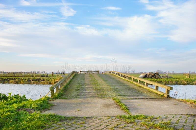 Haarlem stad, Nederländerna arkivfoton